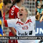 Women Handball World Championship TV Coverage 2017