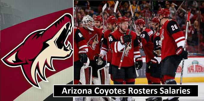 Arizona Coyotes Players Earnings